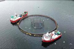 aquaculture (3)