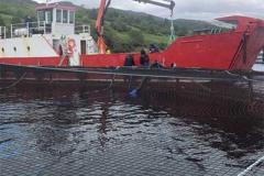 aquaculture (7)